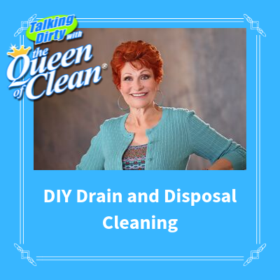 DIY DRAIN and DISPOSAL CLEANING