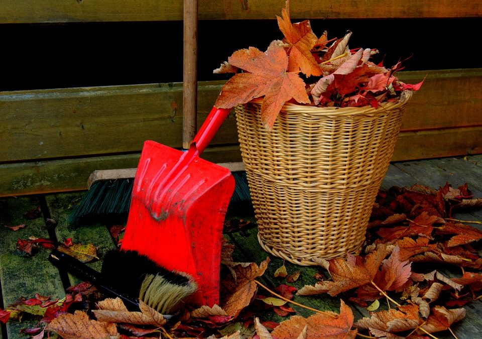 FALL CLEAN UP FOR YOUR HOME