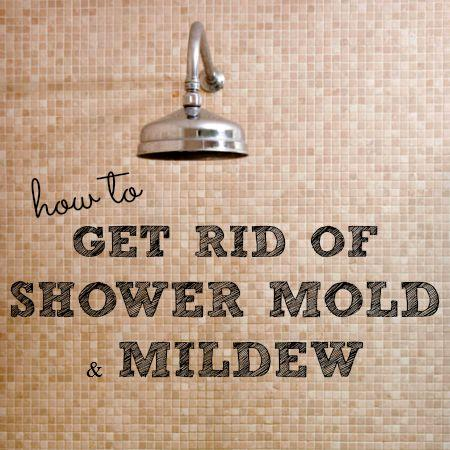 Cleaning Mold In Shower Image Cabinets And Shower MandraTavernCom - How to get rid of mold in your bathroom