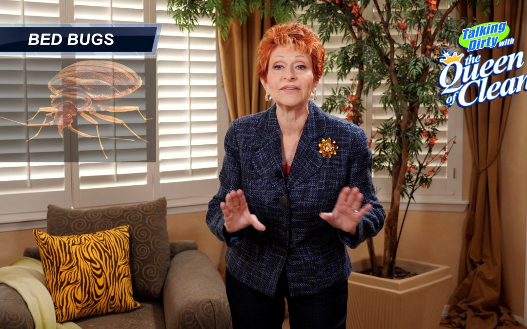 Bed Bug Video – Linda Cobb – Queen of Clean